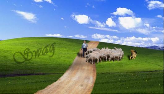 Montage GIMP Windows